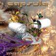 Capsula: Syntheses of Reality